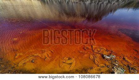Red Lake 06
