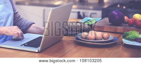 Housewife Searching Preparing Menu Laptop Concept