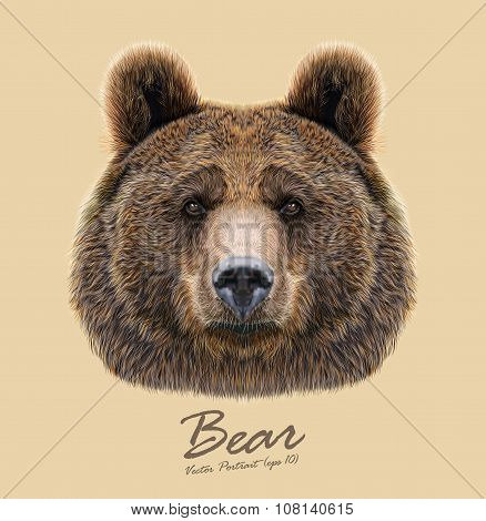 Vector Illustrated Portrait of Bear on beige background