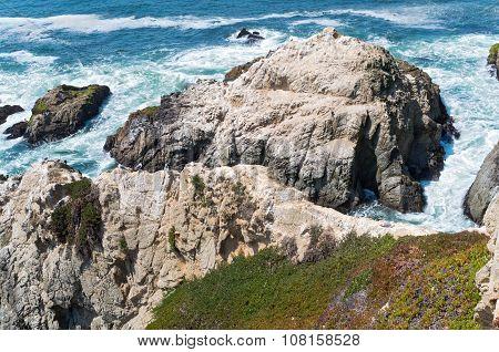 Bodega Head Rocky Coast And Tide