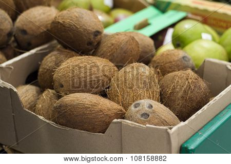 Coconut On Shelf In Store
