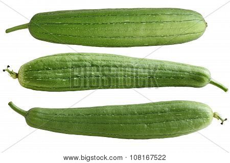Luffa Fruits