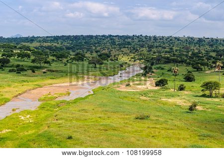 View Of The River In The Tarangire Park, Tanzania