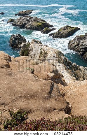 Bodega Head Coastal Ridge And Tide