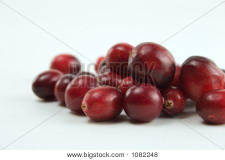 Cranberry Pile