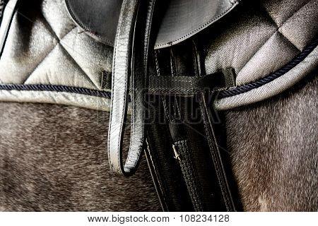 Close Up Of Black Leather Saddle On Horse Back