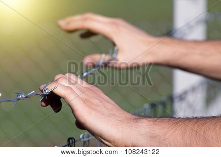 Male Hands On Barbed Wire