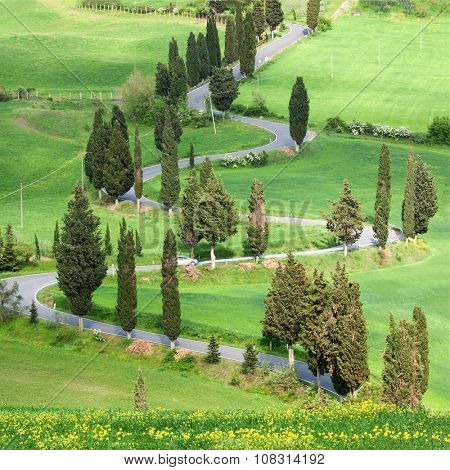 Beautiful landscape in Tuscany with sinuous road and yellow bus