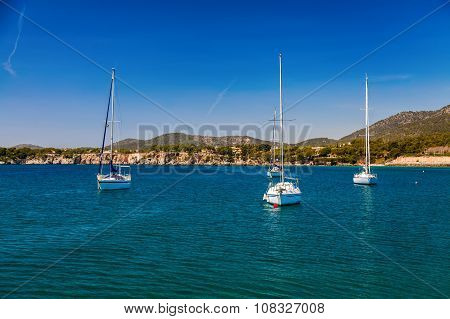 Small Yachts In The Harbor Of Portals Nous