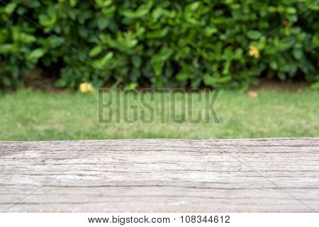 Cement Bench In Wood Like Surface With Blur Plant Background