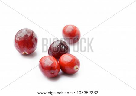 Fresh Cranberries On White Background