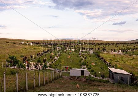 View Of An Graveyard Or Cemetery For Pets