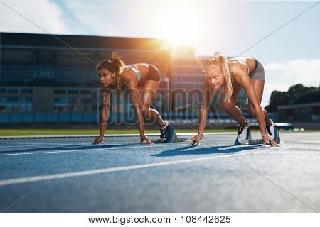 Determined Female Athletes Ready To Start A Race