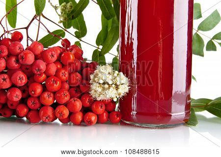 Cropped Red Ash-berry With Jar Of Juice On White