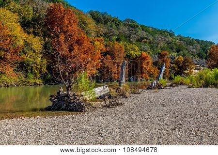 Fall Foliage At Guadalupe State Park, Texas