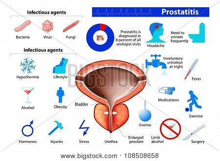 Prostatitis. Benign Enlargement Of The Prostate