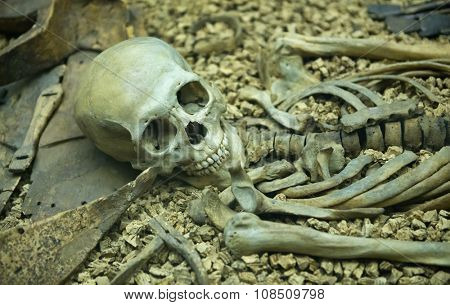 Human skeleton in an open grave with the skull and bones laid out in anatomical order in a catacomb or burial site