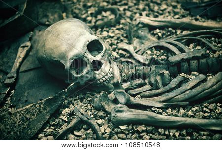 Macabre open grave with a human skeleton in a catacomb or burial site suitable as a Halloween or horror background