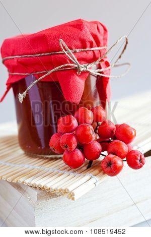 fresh homemade rowanberry sauce in glass jar
