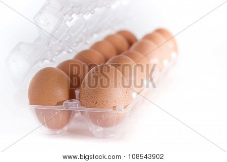 Eggs Container