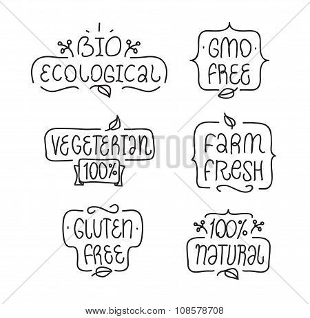 Gmo and gluten free, bio ecological, natural vegeterian elements set. Hand drawn lettering. Bages or
