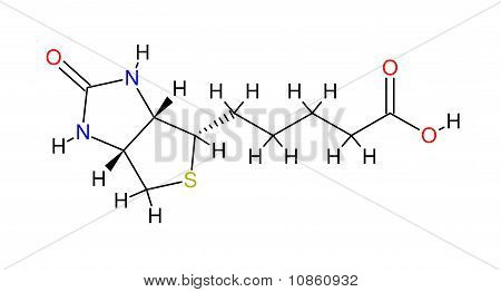 Structural Formula Of Biotin