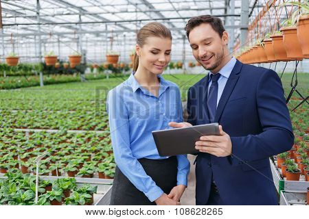 Nice greenhouse owners controlling their business