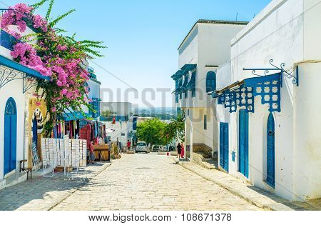 Visiting Sidi Bou Said