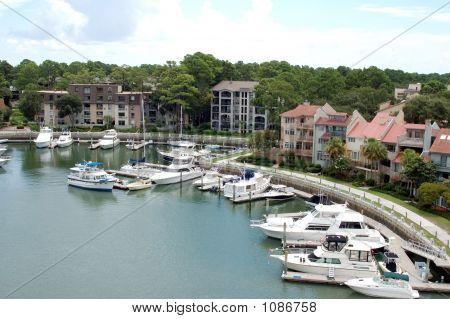 Hilton Head Islands
