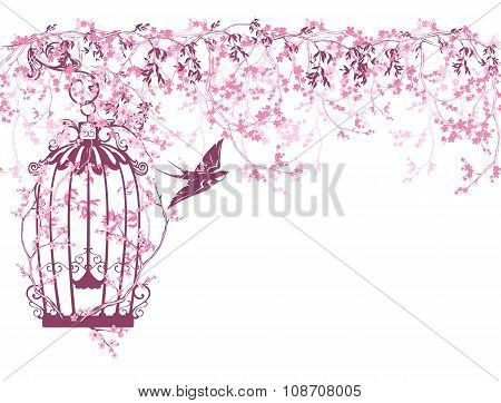 Spring Branches And Bird Cage