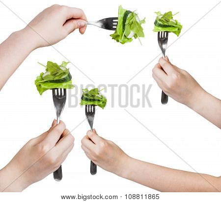 Set Of Forks With Impaled Fresh Green Salad