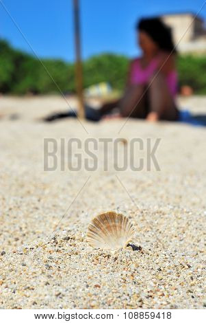 macro of a little brown shell on the sand in the beach with the shape of a girl with a pink costume behind