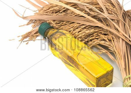 Rice Bran Oil In Bottle Glass With Rice Paddy On White