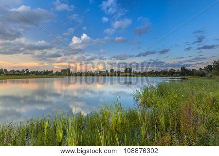 River Forelands Blauwe Kamer