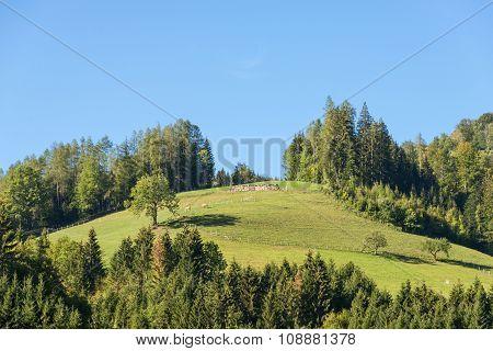 Limestone Alps in Upper Austria