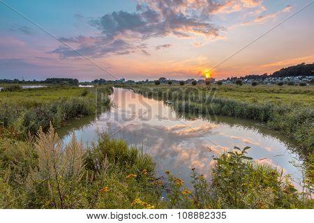 Betuwe River Forelands