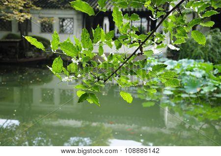 Lingering Garden Suzhou