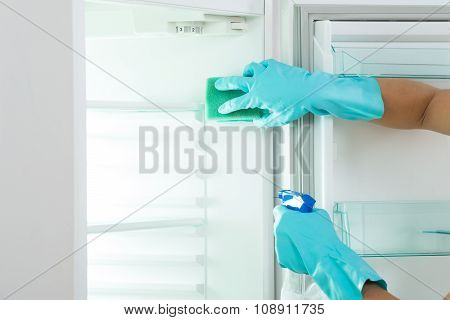 Cropped Image Of Young Woman Cleaning Refrigerator