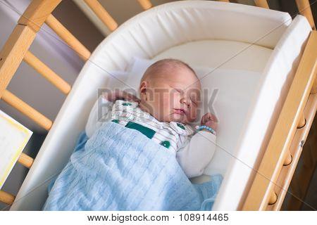 Newborn Baby Boy In Hosptal Cot