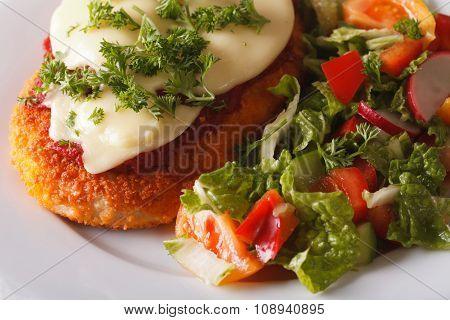 Chicken Parmigiana And Fresh Salad Macro. Horizontal