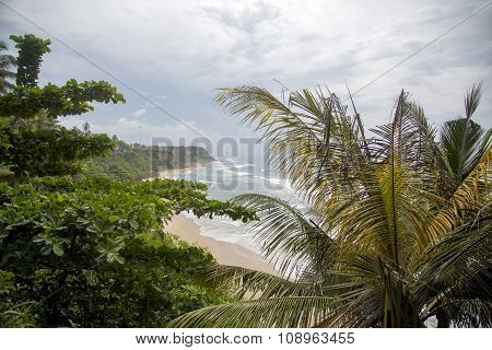 Varkala Beach In Kerala State, India