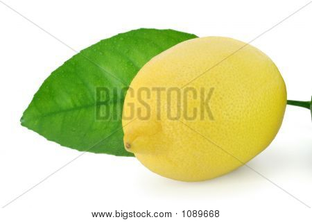 Fresh Lemon With Lemon Leaf