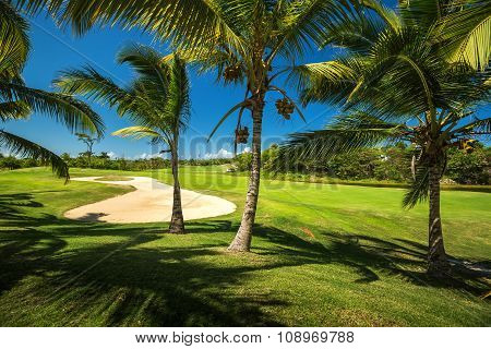 Golf Course. Beautiful Landscape Of A Golf Court With Palm Trees In Punta Cana