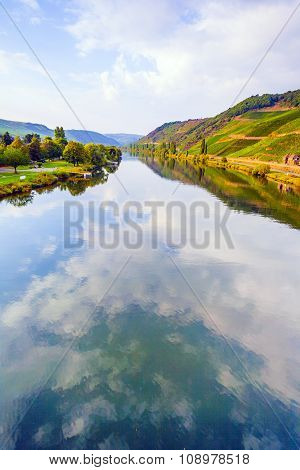 Vineyards At The Hills Of The Romantic River Moselle  Edge In Summer With Fresh Grapes And Reflectio