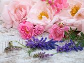 Pale pink and bright pink roses and tufted vetch on the white rough wooden table poster