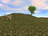 a deer on a hillside of wild flowers stares back. good detail at large sizes. poster