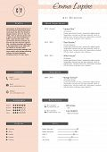 Vestor creative resume template. Minimalistic pink and white style. CV light infographic elements. Business personal job document. poster