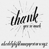 Thank you so much Script lettering font, handwritten calligraphic alphabet, It can be used for your design poster