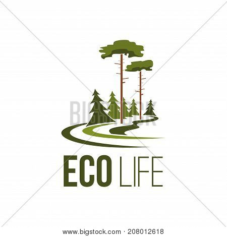 Eco life and eco-friendly green ecology company icon template design. Vector isolated parkland square, forest tree or garden and woodland for environment and nature planting or urban city gardening