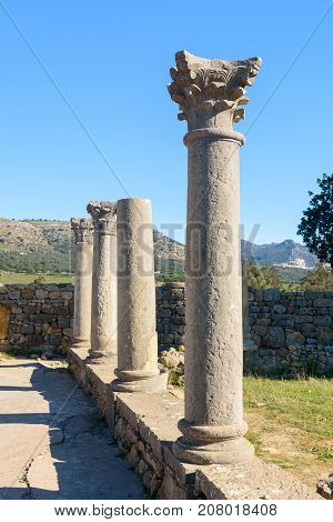 Roman ruins ancient Roman city of Volubilis. Morocco. North Africa